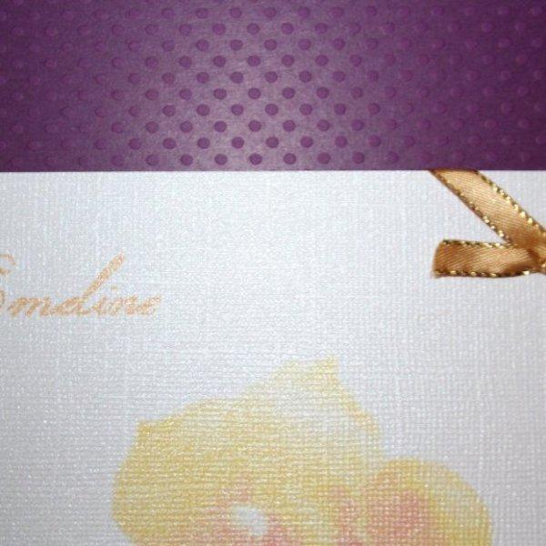 Un amour d'orchidée