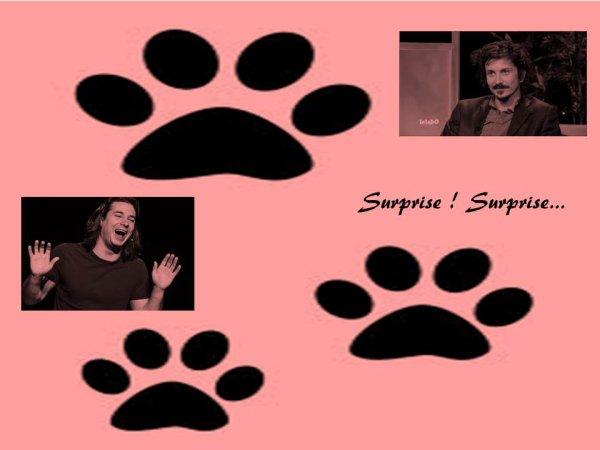 Surprise ! Surprise...