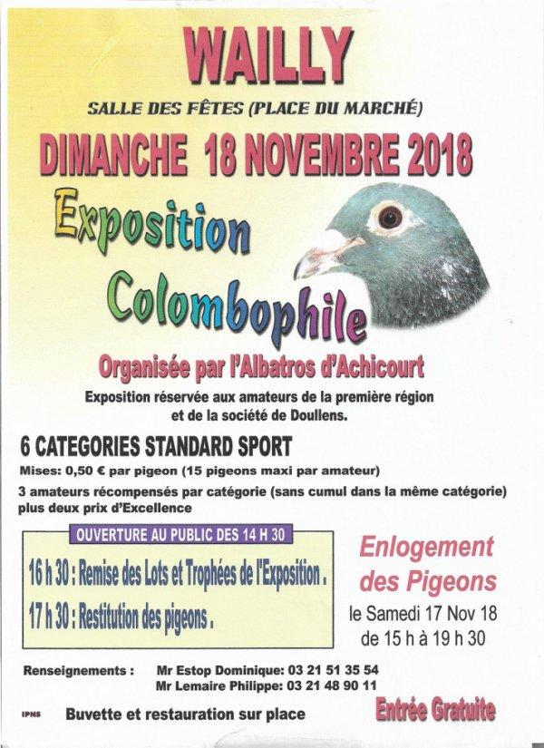 EXPOSITION ORGANISEE PAR L'ALBATROS D' ACHICOURT