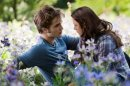 Photo de twilight49v