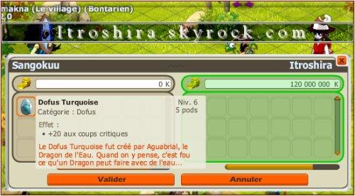 Dofus turquoise +20