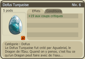 Pseudos / XP / Dofus Turquoise / Runes
