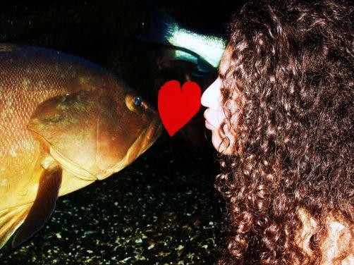 Aquarium à Sète
