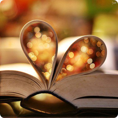 « Le monde se divise en deux catégories de gens : ceux qui lisent des livres et ceux qui écoutent ceux qui ont lu des livres. » Bernard Werber