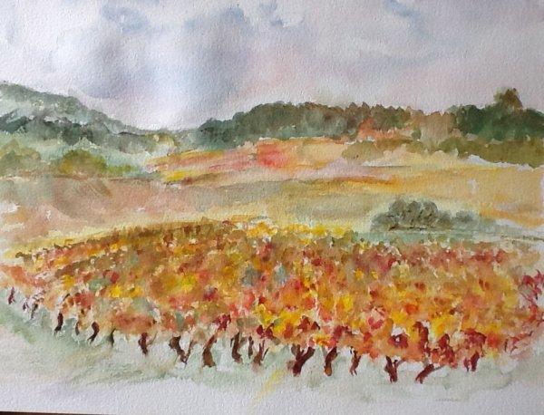 Les vignes cet automne