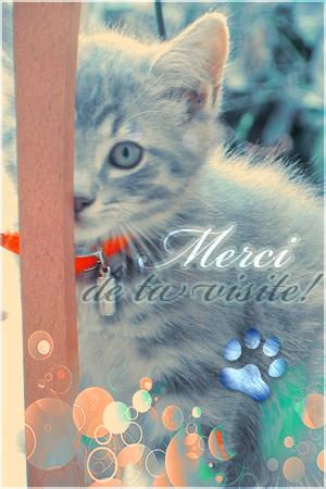 A Bientôt sur Kitten-Xena !