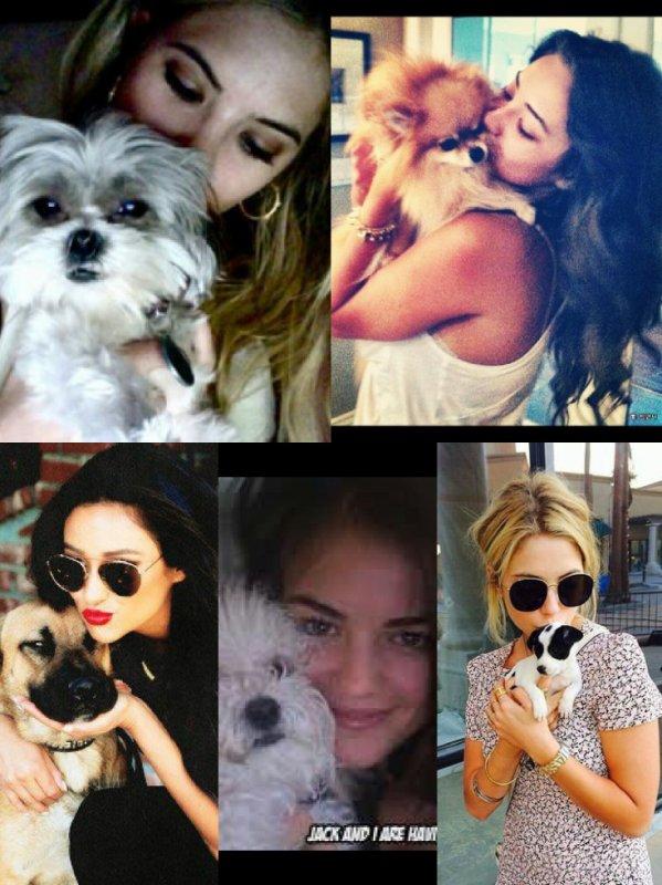 Les actrices de PLL avec leurs animaux