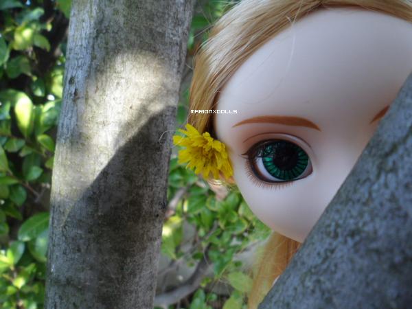 """""""La beauté est la fleur du bonheur."""""""