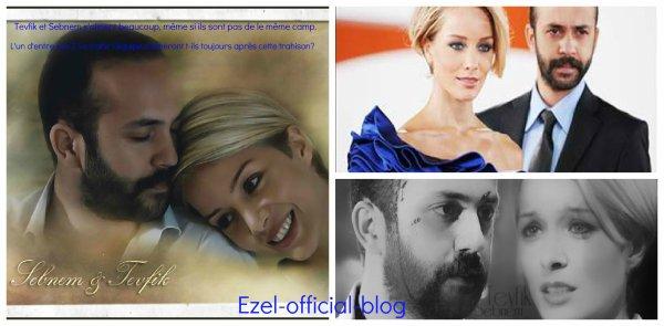 """LES COUPLES DES """"EZEL"""" VOTER POUR VOTRE PRÉFÉRÉ CLIQUEZ SUR LES IMAGES!"""