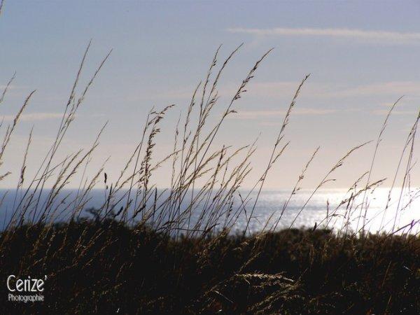 La mer est sans routes, la mer est sans explications. [Alessandro Baricco]