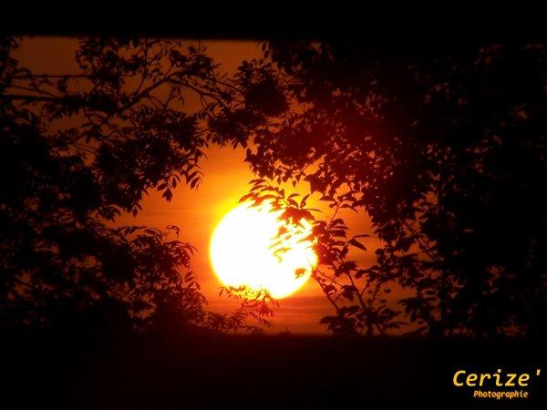 La Terre n'a qu'un Soleil. [Proverbe Africain]