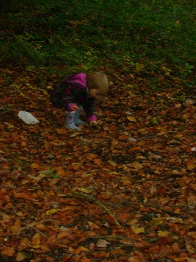 L'automne.