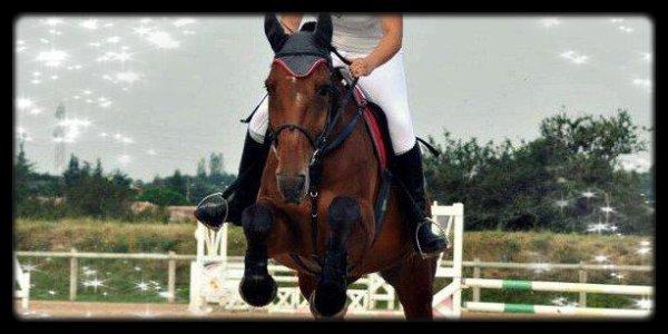 """"""" L'Équitation est le seul sport individuel qui se pratique à deux ♥ """""""
