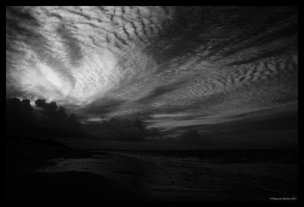 © Manceau Bastien 2011
