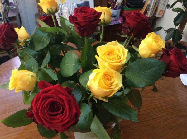 Quelques fleurs pour les blogeurs
