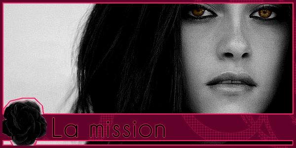 Chapitre I : La mission