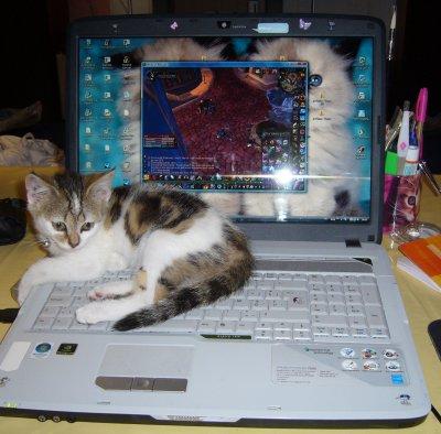 J'aime bien m'installer sur l'ordinateur !