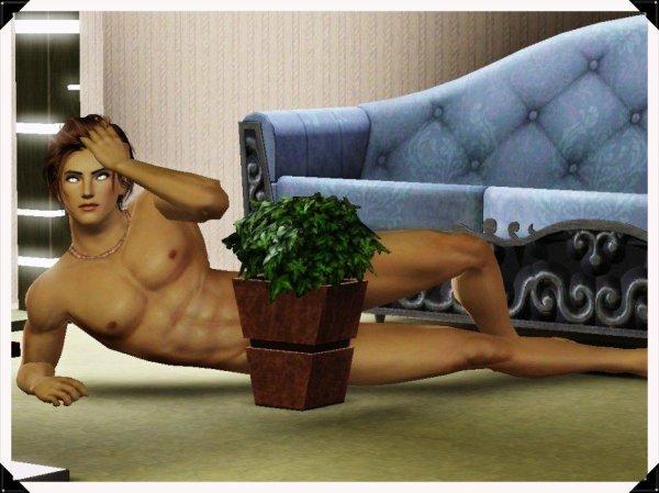 Bienvenue Sur Mister Sims 2013