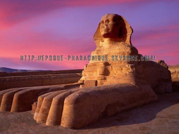Le sphinx sur le plateau de Saqqara