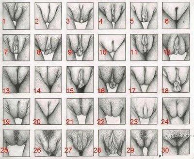 la quel est la votre les fille :) moi sai 10 et defois 9