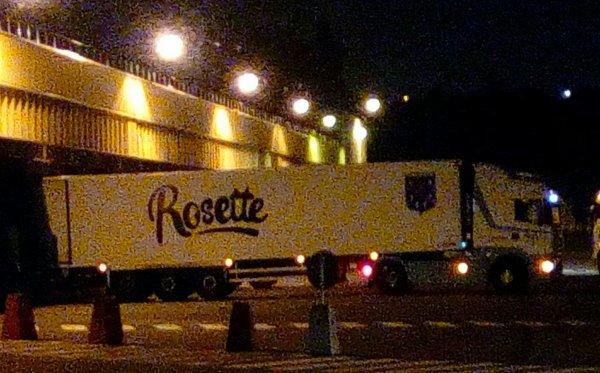ROSETTE  DE NUIT !!