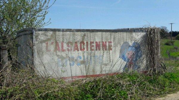 L'ALSACIENNE À L'ABANDON !!