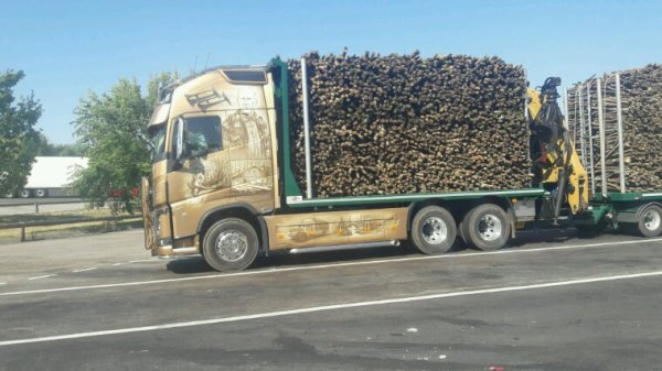 VOLVO FH GRANDES GUEULES!!