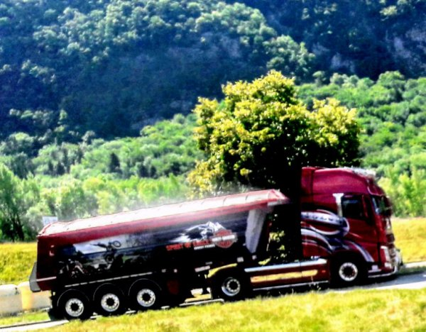 VOLVO FH ROUGE !!