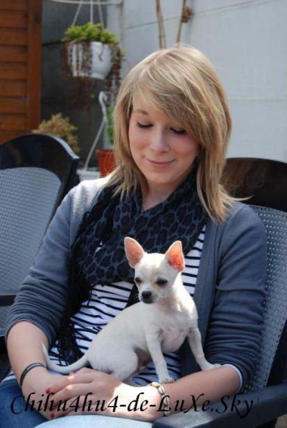 Chihuahua N°3 ♥ (Marine, 16 ans, Belgique)