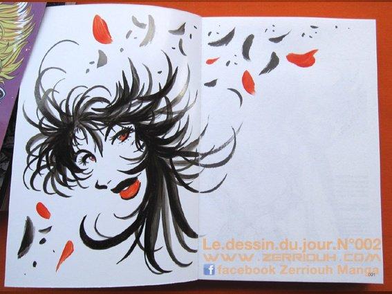 Le.dessin.du.jour.N°002 !!!!! ^_^ By Zerriouh