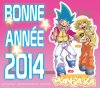 BONNE ANNÉE 2014 (il est encore temps ;) ) !!!^_^