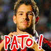 awesome-Pato