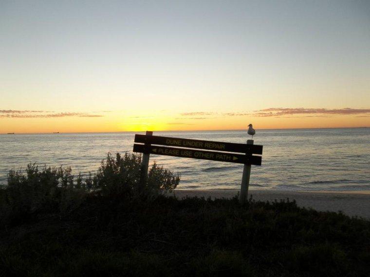 Soleil Austral, et oui pas de soleil de Bretagne ce week-end et j'espère qu'il se réserve  pour la fin du mois !! Un bon wd à tous , mettez le soleil dans vos coeurs , les mains dans les poches et kenavo!  Bisouzzzzzzzzzzzzzzzzzzz