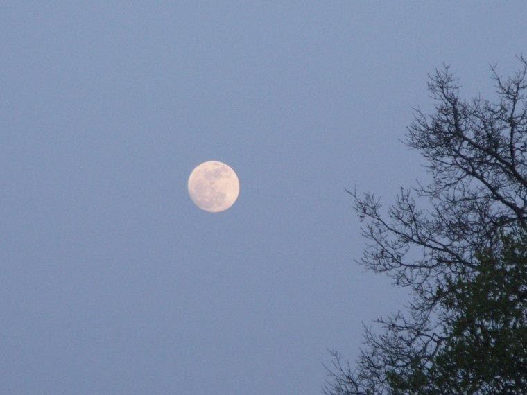 Au clair de la lune mes amis...........................................