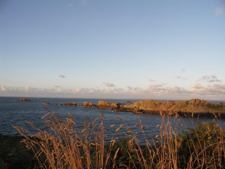 """Les Dauphins d'Emeraude """" Un petit coin de Bretagne"""" et quelques instants magiques d'Août"""