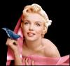 Marilyn,la beautée