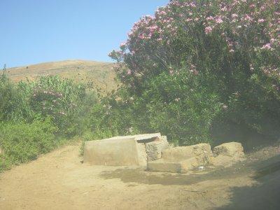 Thara ihadjiyen 07-2011