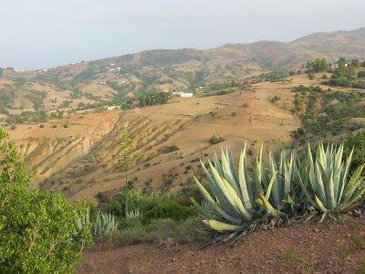 Tamrabaht - Dehar