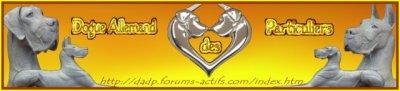 Forum Dogue Allemand Des Particuliers
