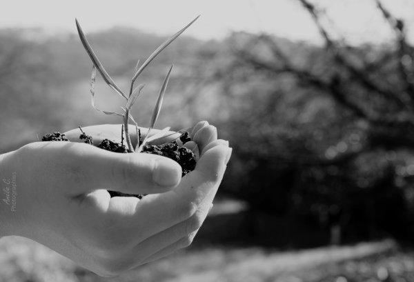 Car la vie est entre tes mains.