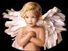 ▒▒▒ღﻼღﻼღღﻼ▒▒▒▒▒▒▒▒l ange est plus beau que la rose .▒▒▒▒▒▒ﻼღღ