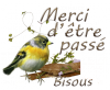 .…......(¯`un si belle oiseau•.¸.•°*°•. ✿ .•°*°•.¸.•´¯)
