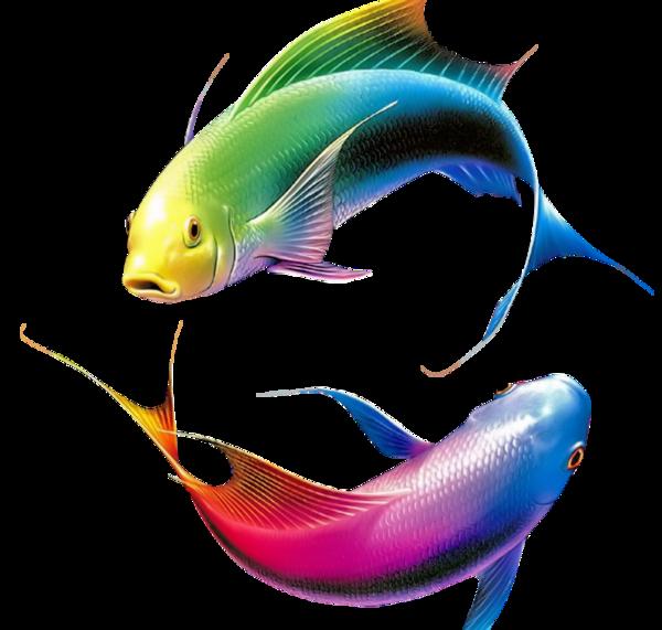 ◊ ╔═══❥ (♥) Bonjour (♥)une histoire de poisson ❥══════════♥