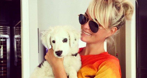Laeticia Hallyday a récupéré Cheyenne, la chienne de Johnny