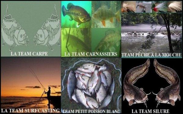 L'univers de la pêche le FORUM de tous les Pêcheurs