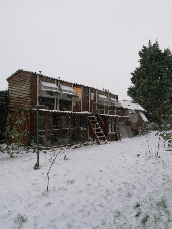 Mon ptit coin de paradis sous la neige !!