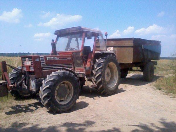 Moisson !! Fiat 110-90 et benne Duchesne 8 tonnes