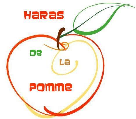 Bienvenue au Haras de la Pomme