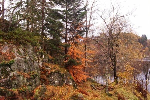 Automne en Norvège