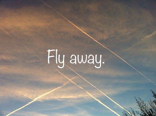 J'ai envie d'autre chose. J'ai envie de liberté, j'ai envie de choix, j'ai envie de vivre pour moi.